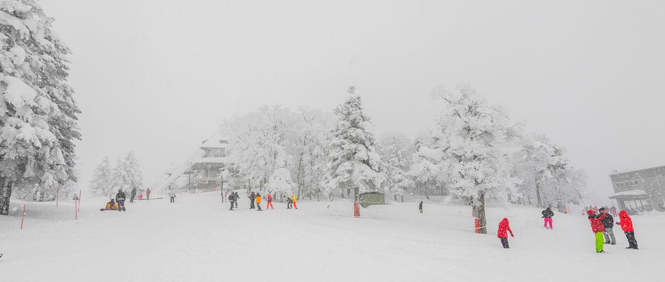 Norikura Winter Wonderland